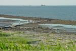 Wilhelmshave: Bilder vom Geniusstrand bei Ebbe