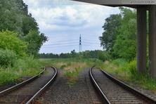 Richtung Voslapper Groden-Nord (links) und Rüstersieler Groden (rechts)