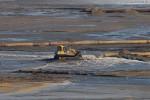 JadeWeserPort: Sand-Wasser-Gemisch wir mit der Raupe verteilt