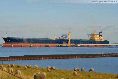 Der Supertanker Australis am NWO-Löschkopf Nr. 4