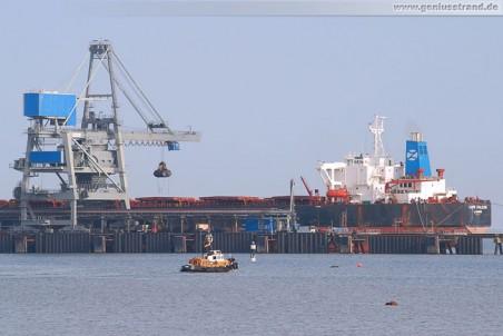 Die Cape Falcon löscht 120.000 t Steinkohle an der Niedersachsenbrücke