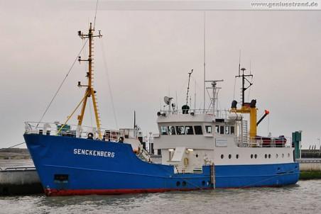 Das Forschungsschiff Senckenberg im Heimathafen Wilhelmshaven