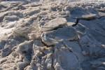 Maritime Winterbilder aus Wilhelmshaven