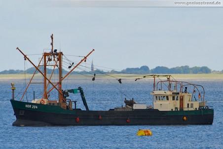 Fischfangboot Andrea (NOR 204) im Jadefahrwasser