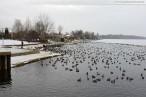 Winterbilder aus Wilhelmshaven 2011 - Banter See