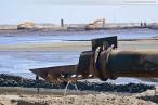 JadeWeserPort: Sandaufspülung an der zukünftigen Logistikzone