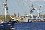 Wilhelmshaven: Das Segelschiff Thalassa (Schonerbark) im Innenhafen