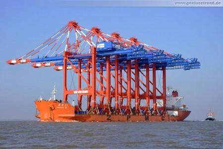Spezialtransportschiff Zhen Hua 23 mit vier Containerbrücken für den JWP