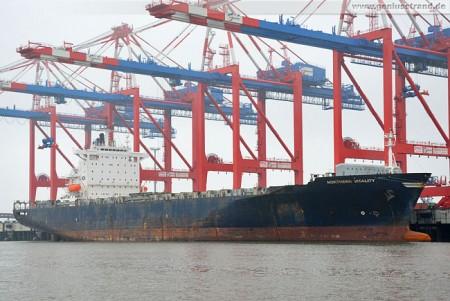 Wilhelmshaven: Containerschiff Northern Vitality am JadeWeserPort