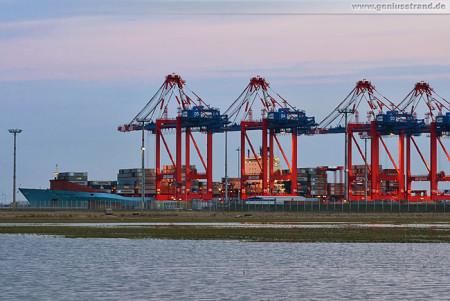 Wilhelmshaven JadeWeserPort: Containerschiff Maersk Bentonville an der Kaje