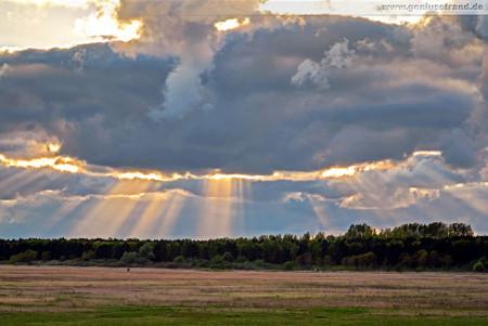 Stadtgrenze Wilhelmshaven: Sonnenuntergang im Voslapper Groden-Nord