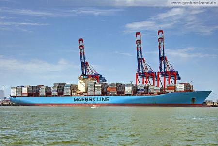 Containerterminal Wilhelmshaven (CTW): Containerschiff Elly Maersk