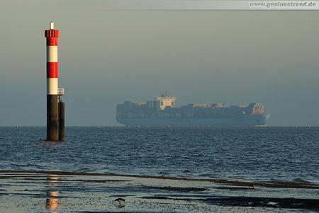 Container Terminal Wilhelmshaven (CTW): Skagen Maersk beim Einlaufen