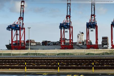 Eurogate Container Terminal Wilhelmshaven: Containerschiff Maersk Elgin