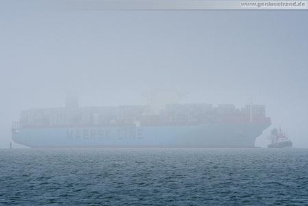 Containerterminal Wilhelmshaven (CTW): Containerschiff MAERSK EDMONTON