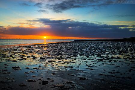 Wilhelmshaven: Sonnenuntergang im Banter Watt