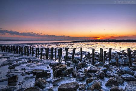 Wilhelmshaven: Das Weltnaturerbe Wattenmeer bei Sonnenuntergang