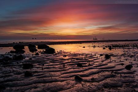 Wilhelmshaven: Sonnenaufgang im Rüstersieler Watt