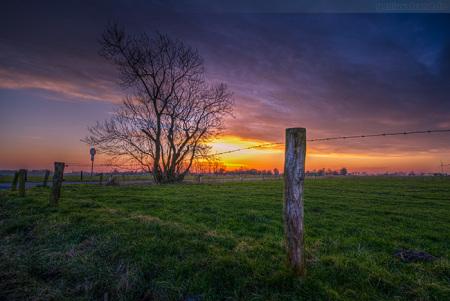 Wilhelmshaven Stadtteil Fedderwarden: Sonnenuntergang in Schilldeich