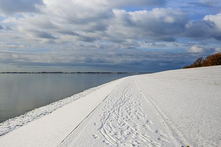 Aktuelle Winterbilder aus Wilhelmshaven (Banter Seedeich)
