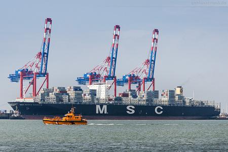 Container Terminal Wilhelmshaven: Containerschiff MSC MARIA SAVERIA