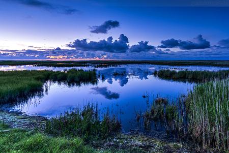 SCHILLIG: Salwiese in der blauen Stunde kurz nach Sonnenuntergang