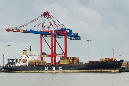 Schiffsankünfte JadeWeserPort: MSC Malin (ex Kapitan Kanevskiy)