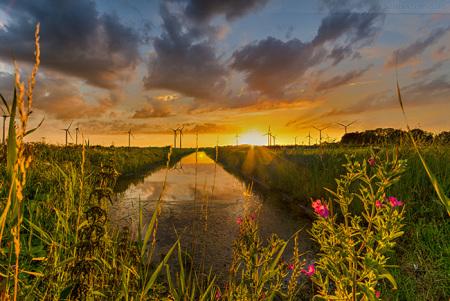 Sonnenuntergang in Wilhelmshaven Stadtteil Sengwarden/Utters