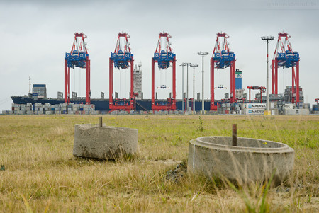 Containerschiff DALI (L 300 m) am JadeWeserPort in Wilhelmshaven