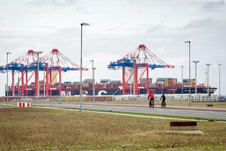 JadeWeserPort: Größtes Containerschiff der Welt MSC MAYA (L 395 m)