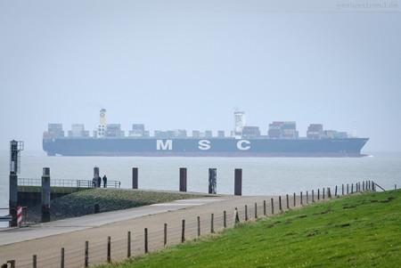 Schiffsankunft JadeWeserPort: Containerschiff MSC REGULUS (L 366 m)