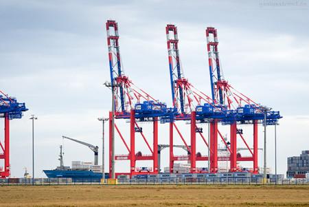 JadeWeserPort Schiffsankünfte: Containerschiff MAERSK NEWCASTLE