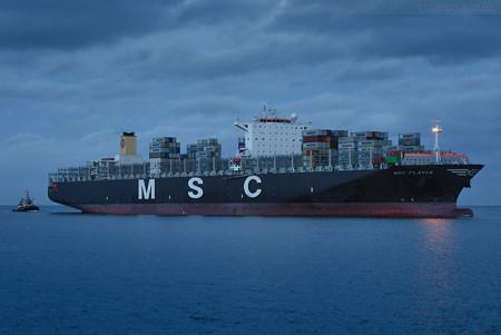 JadeWeserPort Ankunft: Containerschiff MSC FLAVIA (MSC-Beryl-Typ)