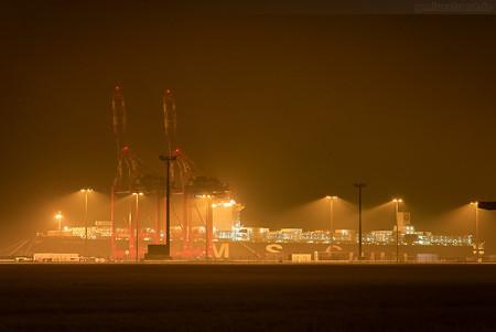 Schiffsankünfte Jade-Weser-Port: MSC LONDON (MSC-London-Typ)