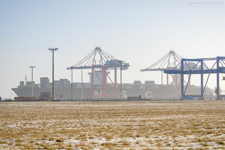 Jade-Weser-Port: Containerschiff MSC HAMBURG (L 399 m)