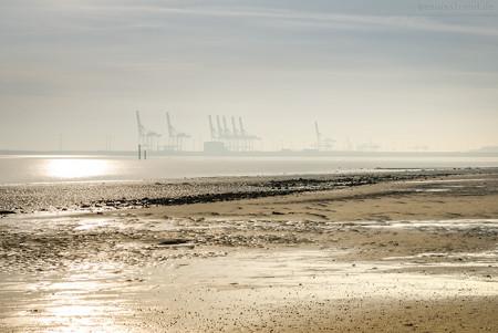 Die Containerbrücken am JadeWeserPort im Morgendunst