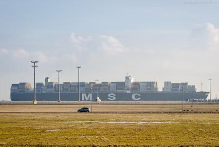 JadeWeserPort Ankünfte: Containerschiff MSC RAPALLO (L 366 m)