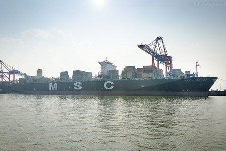 Containerschiff MSC LAURENCE (L 366 m) erstmalig am JadeWeserPort
