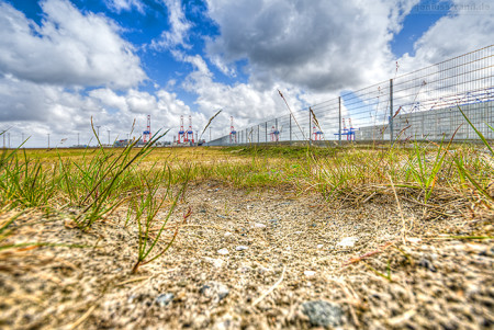 Wilhelmshaven: Impressionen vom JadeWeserPort