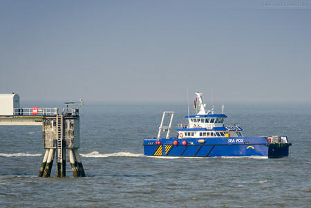 Wilhelmshaven: Crew Transfer Vessel SEA FOX (L 24 m) der Enviro-Serve Ltd.