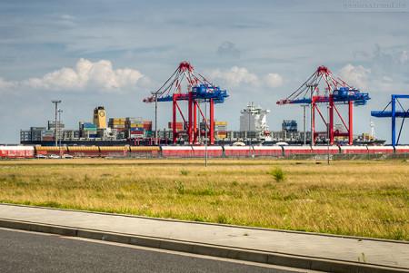 JADEWESERPORT: Containerschiff MSC ARIANE (L 366 m) vom MSC-DANIT-TYP