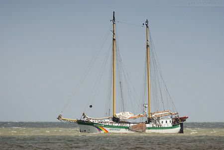 Das Greenpeace-Segelschiff BELUGA II vor Hooksiel