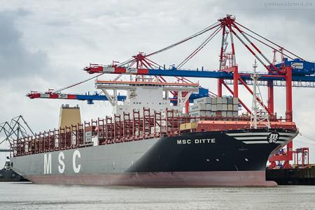 Größtes Containerschiff der Welt: MSC DITTE (L 398 m) am JadeWeserPort