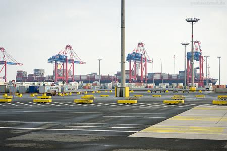 Container Terminal Wilhelmshaven (CTW): MSC SVEVA (L 395 m)