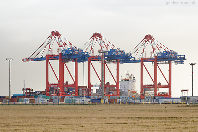 WILHELMSHAVEN: Containerschiff MAERSK PALERMO am JadeWeserPort