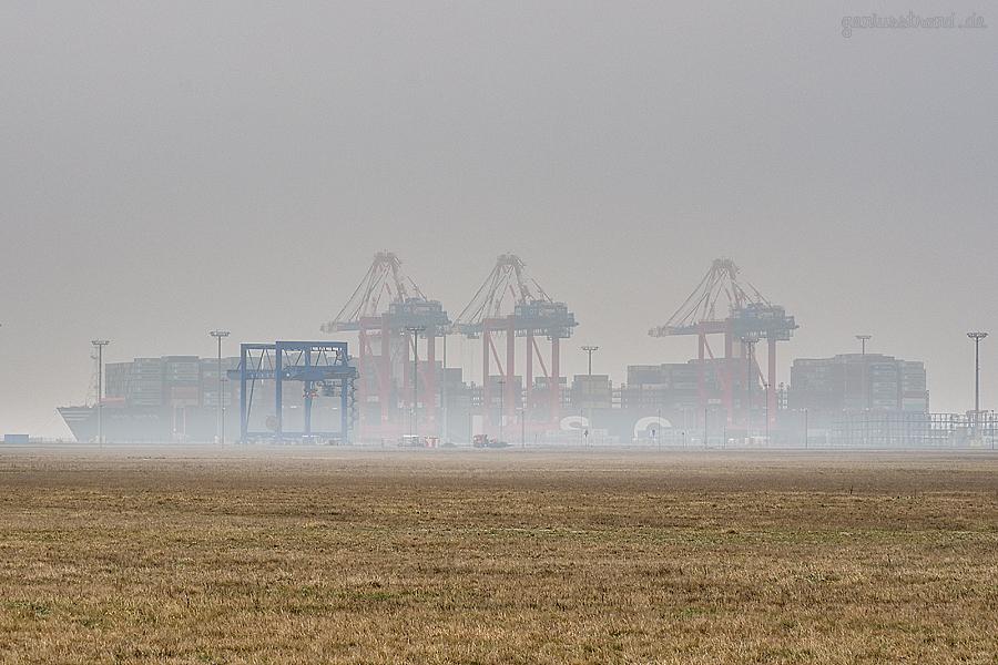 Eurogate Container Terminal Wilhelmshaven (CTW): Containerschiff MSC DITTE (L 398 m) liegt an der Kaikante