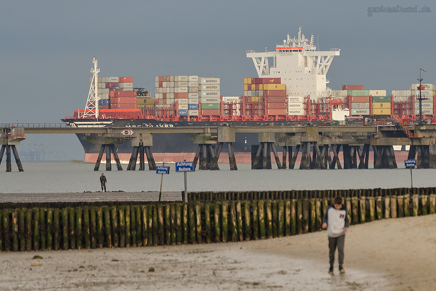 JADEWESERPORT: Containerschiff MSC OLIVER (L 395 m) auslaufend