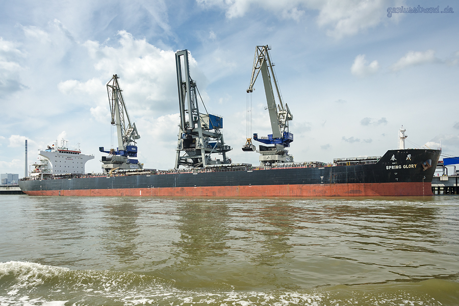 BULK TERMINAL WILHELMSHAVEN (BTW): Bulk Carrier SPRING GLORY