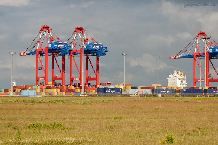 Am JadeWeserPort liegt das Containerschiff MSC JULIA R. (L 281 m)