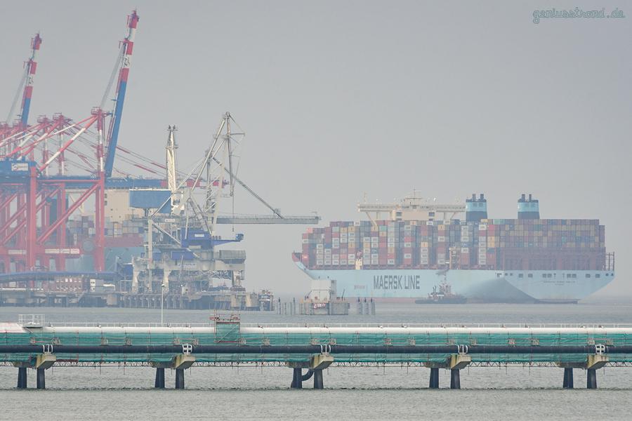 WILHELMSHAVEN: Typschiff der Triple-E-Klasse am JadeWeserPort